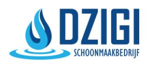 Dzigi logo